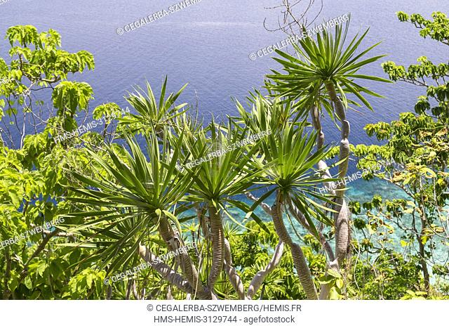 Philippines, Palawan, Taytay Bay, Pabellon Islands also known as Elephant Island, view from the heights