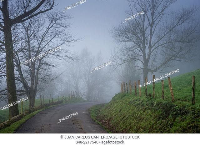 Road in the fog. Cantabria. Spain. Europe