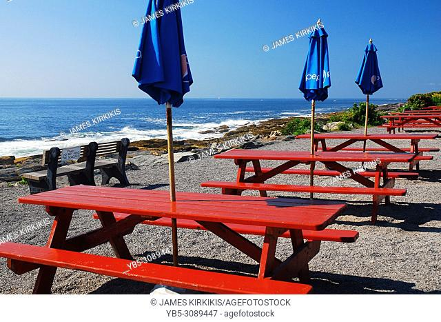 Rows of picnic tabbles offer a splendid view of the Atlanitc Ocean from the Maine Coast