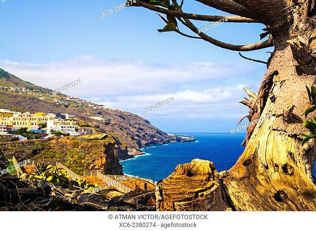 panoramic view of Santa Cruz de La Palma municipality