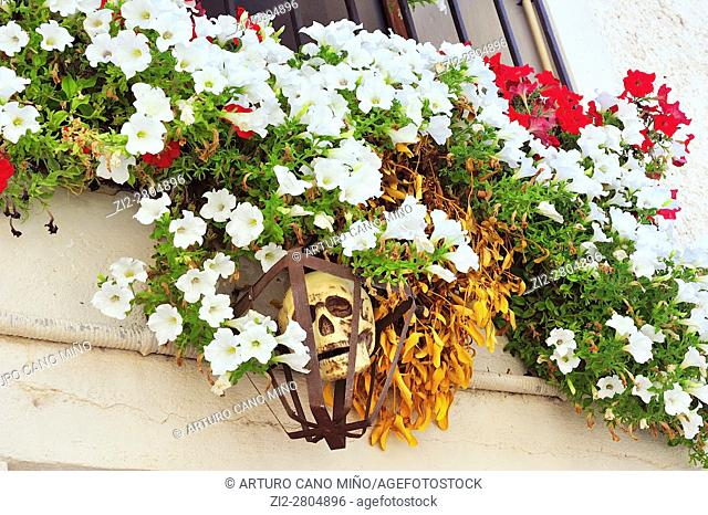 Ornament of a window with flowers and skull dedicated to the witchcraft. Trasmoz, Saragossa province, Spain