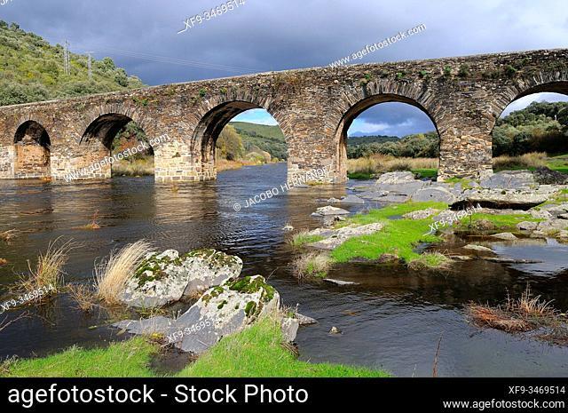 Roman bridge over the Alagón river. Sotoserrano. Salamanca province. Castilla y León. Spain