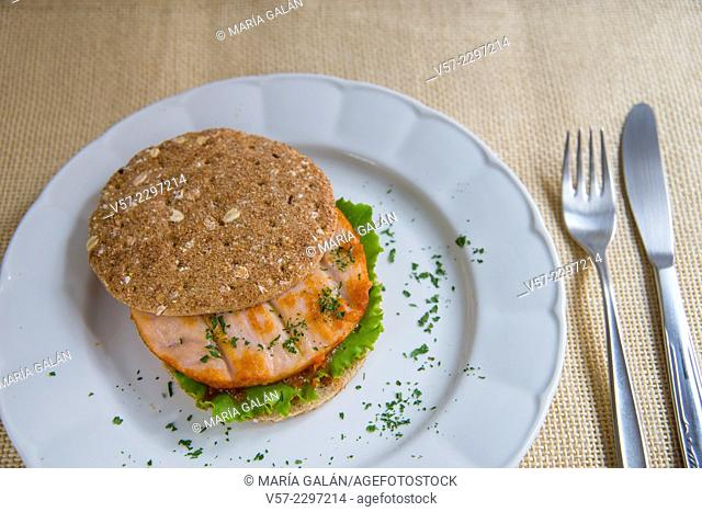 Healthy fast-food: chicken hamburger with lettuce and tomato sauce. Close view