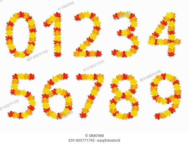 Autumn leaves Numbers