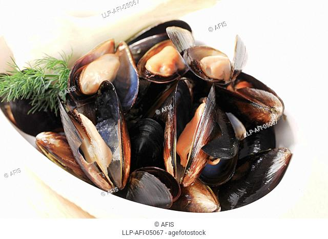 Raw mussels and lemon on ice
