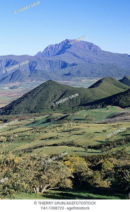Plaine des Cafres and back Piton des Neiges peak, La Reunion island (France), Indian Ocean