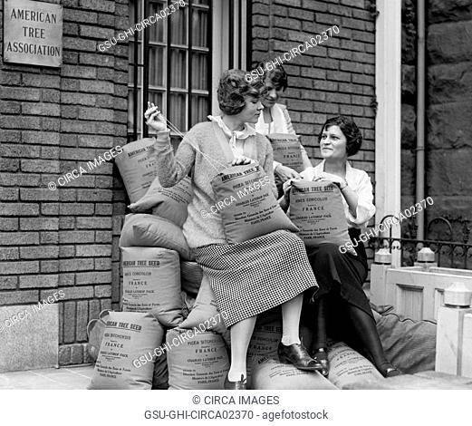 Three Young Women with Sacks of Tree Seed, American Tree Association, Washington DC, USA, National Photo Company, 1923