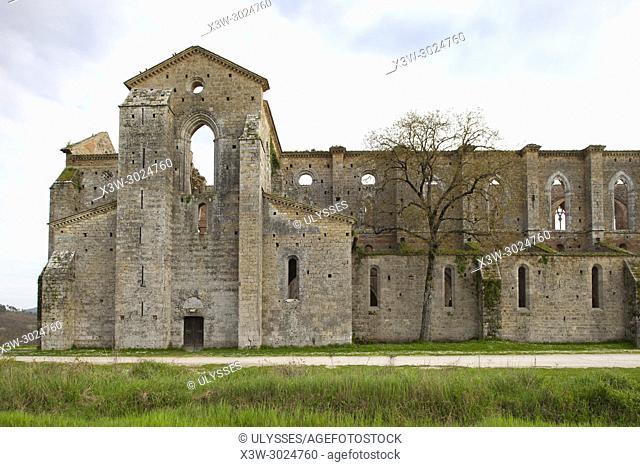 San Galgano abbey, Siena, Tuscany, Italy, Europe
