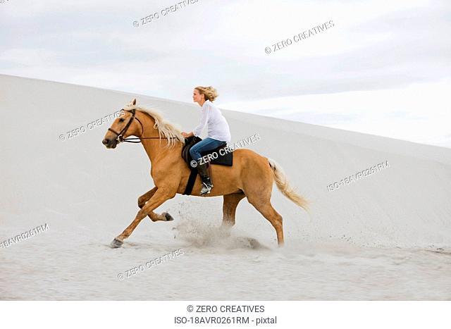 Girl riding horse on the beach