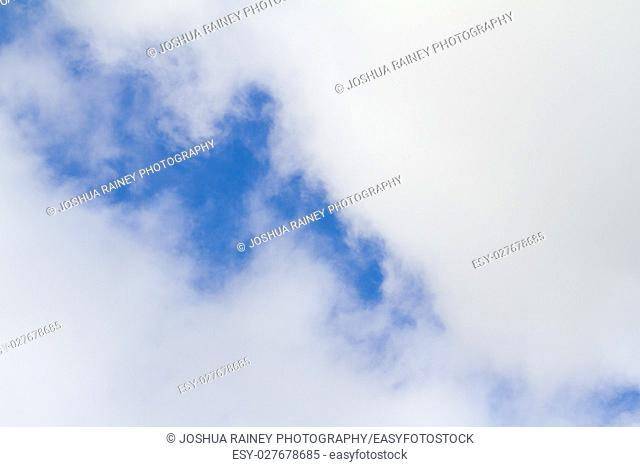 This abstract image of some blue sky and puffy clouds has plenty of copy space for design purposes. It is a very simple vibrant image of the sky