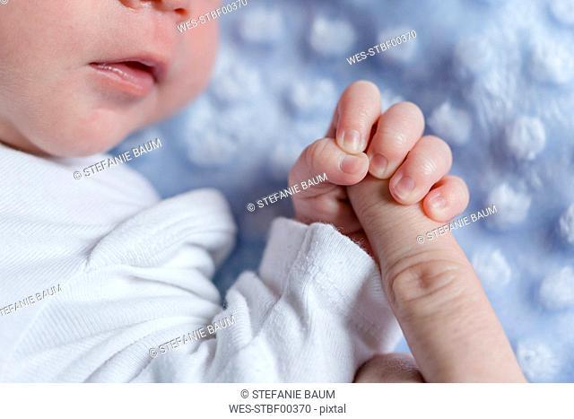 Newborn baby boy holding finger