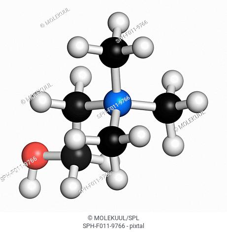 Choline essential nutrient molecule. Atoms are represented as spheres with conventional colour coding: hydrogen (white), carbon (black), oxygen (red)