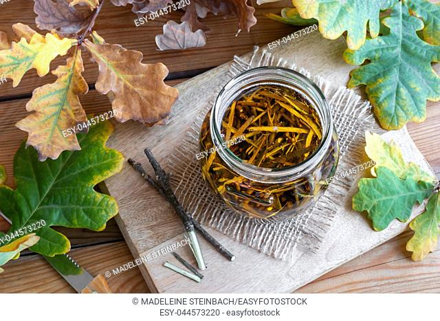 Preparation of homemade alcohol tincture from oak bark