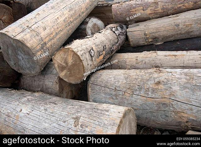 solid cubic meter as a unit of measurement in wood and timber industry