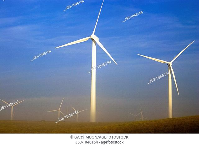 Wind turbines at dawn with ground fog, Judith Gap, Montana USA