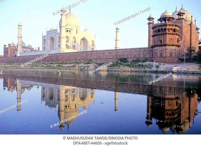 reflection of Taj mahal in yamuna river Seventh Wonder of The World ; Agra ; Uttar Pradesh ; India