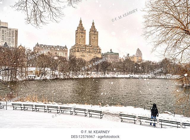 Snowfall by the lake in Central Park; New York City, New York, United States of America