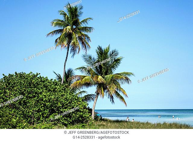 Florida, Keys, Big Pine Key, Bahia Honda State Park, Atlantic Ocean, beach, palm trees
