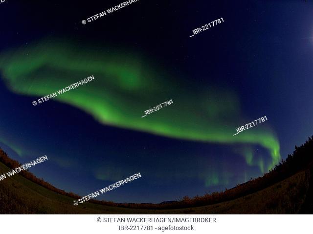 Swirling green northern polar lights, Aurora borealis, near Whitehorse, Yukon Territory, Canada