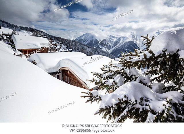 Tree covered with snow frames the typical mountain huts Bettmeralp district of Raron canton of Valais Switzerland Europe