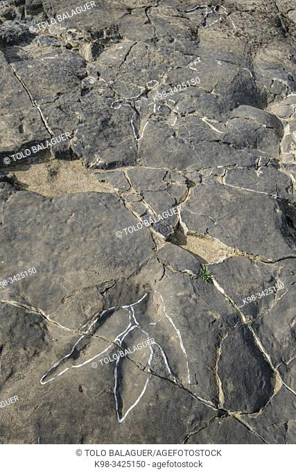 huellas de dinosaurio, Yacimiento de icnitas de La era del Peladillo, Igea, La Rioja , Spain, Europe