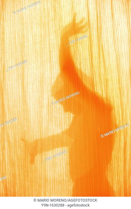 Silhouette of a Woman With Light Effect in a Flamenco Pose