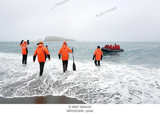 Group of people wading into the ocean on South Georgia, towards a rubber boat with another group of people