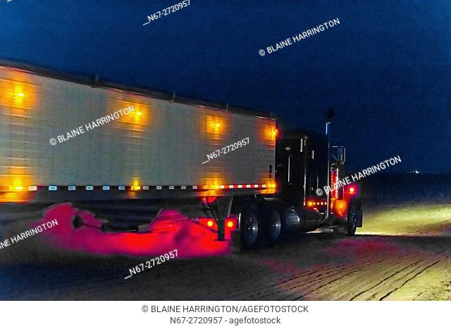 Tractor trailer carrying wheat (grain) just harvested, Schields & Sons, Goodland, Kansas USA