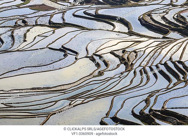 YuanYang rice terraces in Yunnan, China, one of the latest UNESCO World Heritage Sites