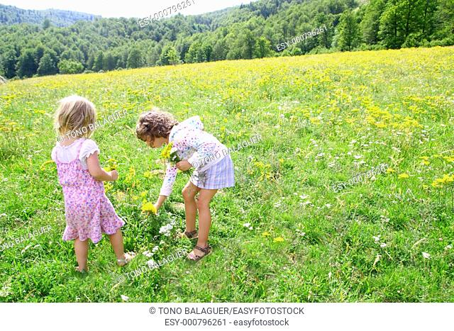 sister girls in meadow playing with spring flowers outdoor
