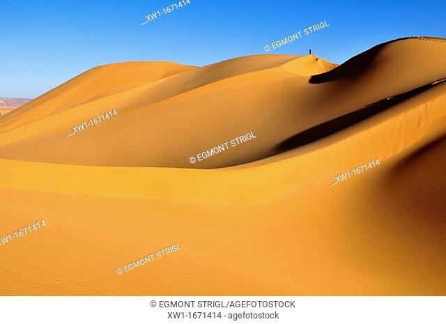 people on the sanddunes of Erg Tihoulahoun, Immidir, Algeria, Sahara, North Africa