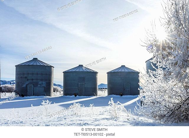 Silos on farm during winter
