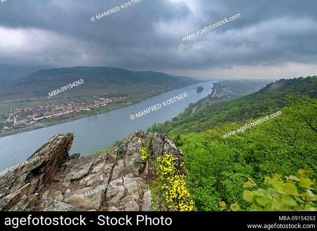 Mautern an der Donau, Bergern im Dunkelsteinerwald, Krems, Wachau, Lower Austria, Austria, Europe. View from the Ferdinands-Warte into the Danube valley with...