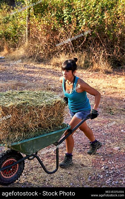 Female farmer pushing wheelbarrow in farm