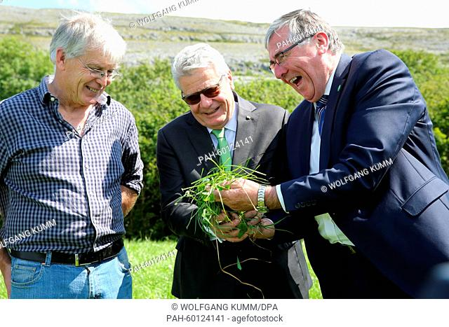 Irish Minister of State for Food, Horticulture and Food Safety, Tom Hayes (r), shows juicy grass for raisning cattle to German President Joachim Gauck on the...
