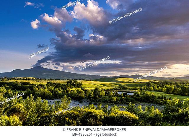 Typical green Tuscan landscape in Val d'Orcia with hills, a lake, trees, yellow broom bushes and Monte Amiata in the distance, Spedaletto, Tuscany, Italy