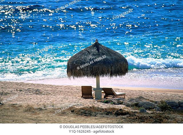 Los Cabos Cabos San Lucas Baja California Mexico