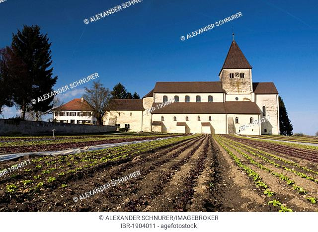 Georgskirche or church of St. George on Reichenau island, UNESCO World Heritage Site, Landkreis Konstanz county, Baden-Wuerttemberg, Germany, Europe