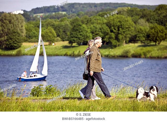 elderly pair walking with dog at the border of Kemnader Stausee, Germany, North Rhine-Westphalia, Ruhr Area, Witten