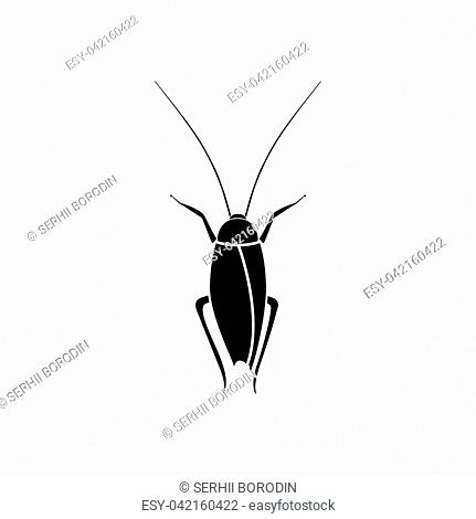 Cockroach it is black color icon