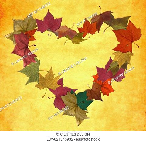Vintage autumn leaves in empty heart shape