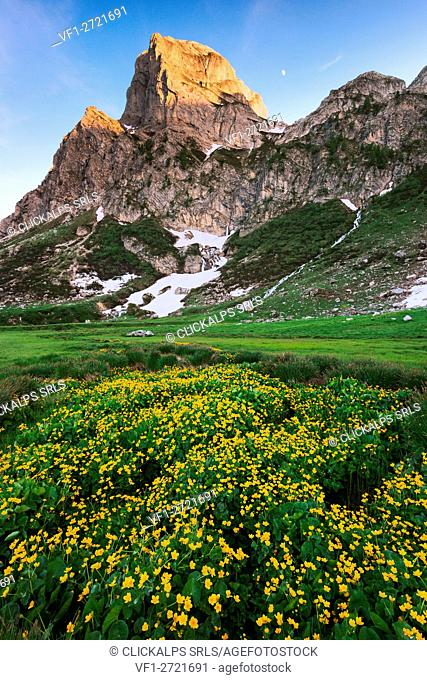 Havis de giorgio peack at sunset - Europe, Italy, Piedmont, Cuneo District, Ellero Valley