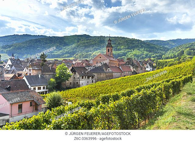 panorama of the village Riquewihr and its town wall, Alsace, France, village and hills with vineyards seen from above