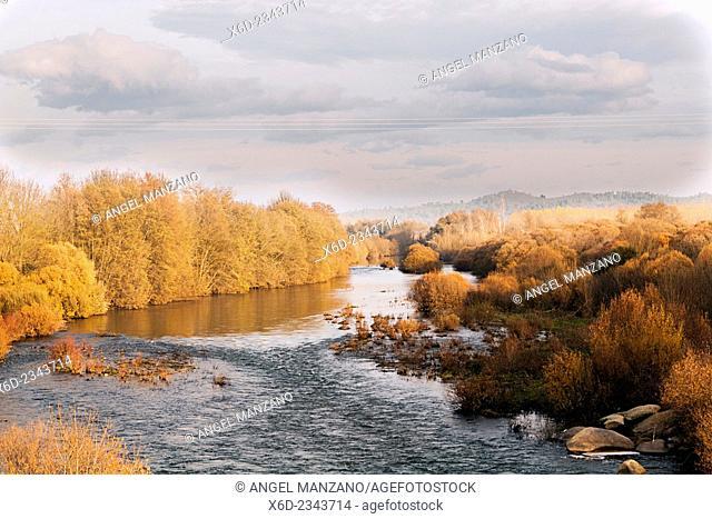 Tietar river