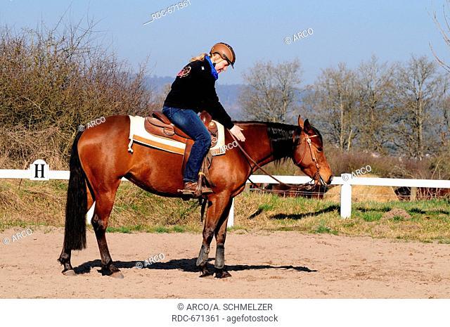 Western Riding, American Quarter Horse, mare, workout, western tack, crash helmet