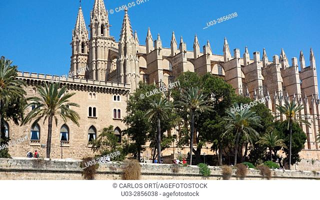 Partial view of the cathedral of Palma de Majorca, the capital city of the balearic island of Majorca. Spain, Europe