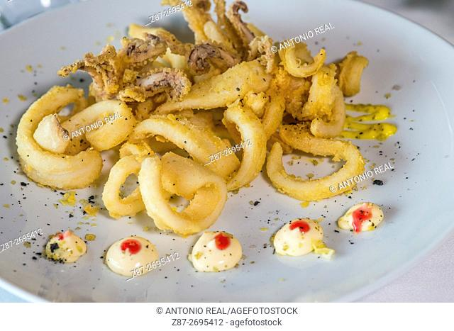 Calamares a la Romana, deep fried squids, Restaurante El Mirador. Alcalá del Júcar, La Manchuela region, Albacete province, Castile La Mancha, Spain