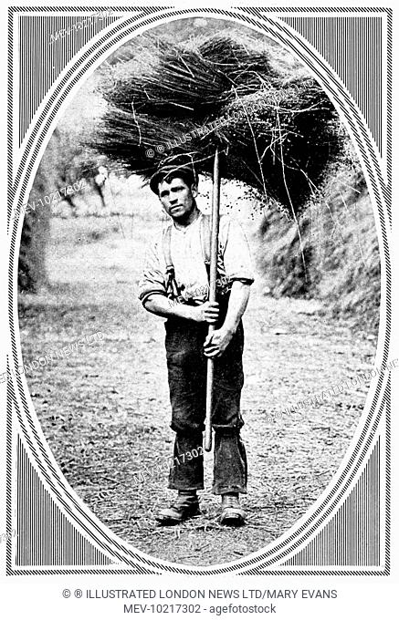 Photograph from a montage featured in the Sphere in 1913 showing various characterful portraits of agricultural workers. Young man carrying a bushel of hay on...