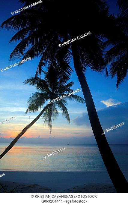 Sunset over the palm trees of a small island within Meemu Atoll, Maldives, Indian Ocean, South Asia