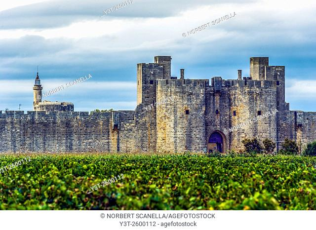 Europe, France, Gard. Aigues-Mortes. Cty wall of Aigues-Mortes